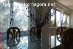 Apartman Montenegrina
